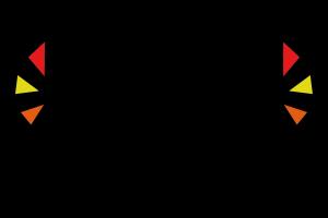 Logo OstPost